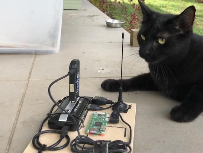 My cat, Snowy, next to a Rapsberry Pi