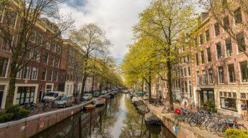 GOTO Amsterdam 2017 <p></p>