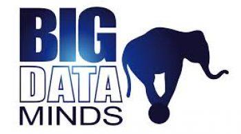Big Data Minds